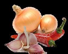 remedios caseiros para orquideas, combate de pragas em orquideas, pimenta cebola, alho