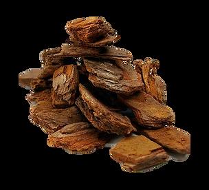melhor substrato para oquideas, casca de pinus