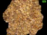 melhor substrato para orquideas, caroço de açai