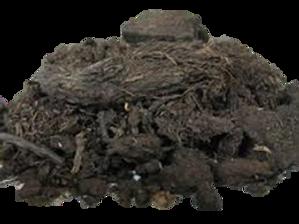melhor substrato para orquideas, turfa