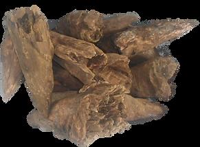 melhor substrato para orquideas, no de pinho