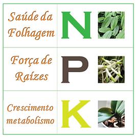 Macronutriente micronutrientes orquídeas