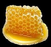 remedios caseiros para orquideas, combate de pragas em orquideas, mel
