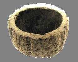melhor substrato para orquideas, ouriço de castanha