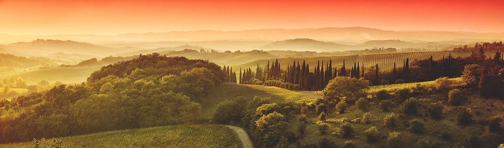 toscana sfondo Bosco Rosso .jpg