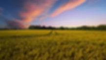 countryside-2326787.jpg