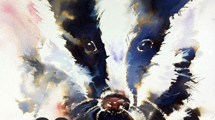 Inky Badger - limited edition giclee print
