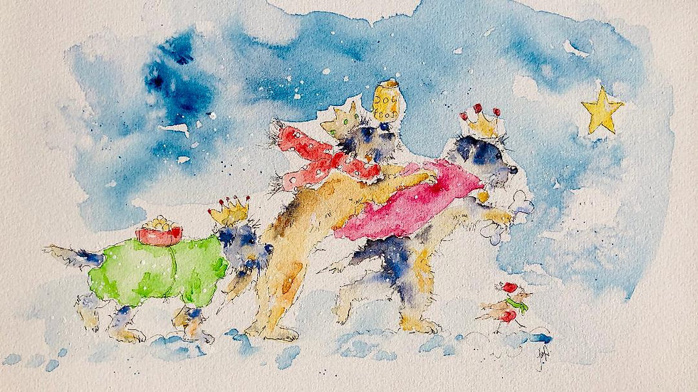 Border Terrier Christmas Cards Pack 5 'The three wise borders'