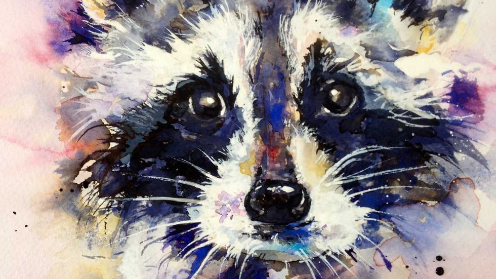 Limited edition giclee print - Raccoon