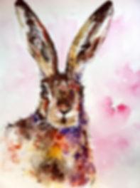 hare saved.jpg