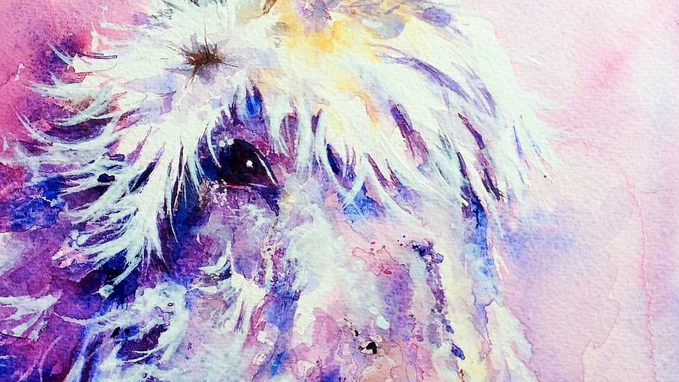 Limited edition giclee print - Purple Donk
