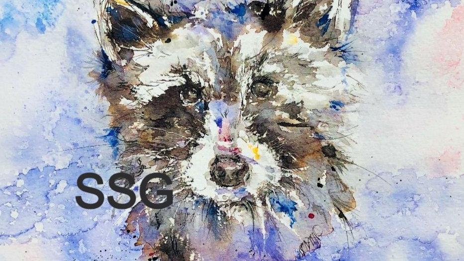 Original Raccoon painting
