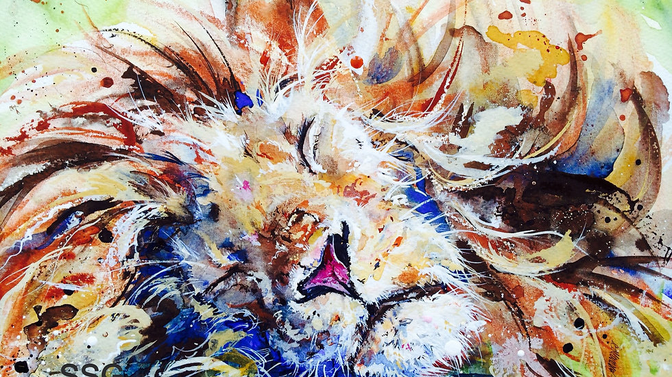 Limited edition giclee print - Sleeping Lion