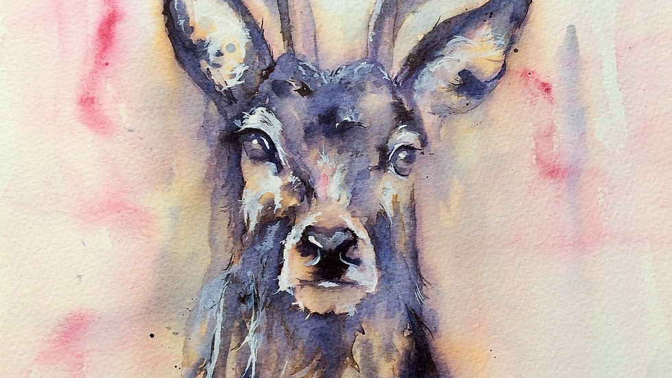 Limited edition giclee print - Stag