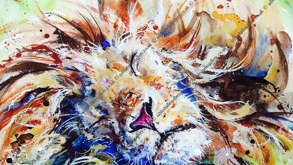 Limited edition giclee print on canvas - sleeping lion