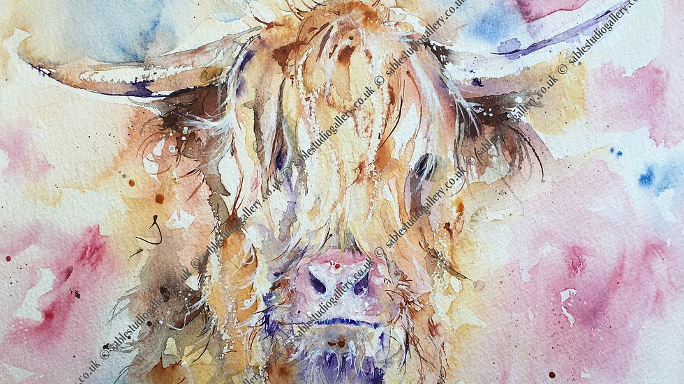 Highland Cow - Limited edition giclee print on canvas