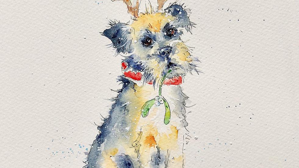 Border Terrier Christmas Cards Pack 5 'Oscar with mistletoe and reindeer ears'
