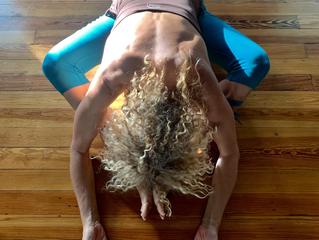 Winter Season: Awaken dormant energy + recharge your practice with Yin Yoga and soups.