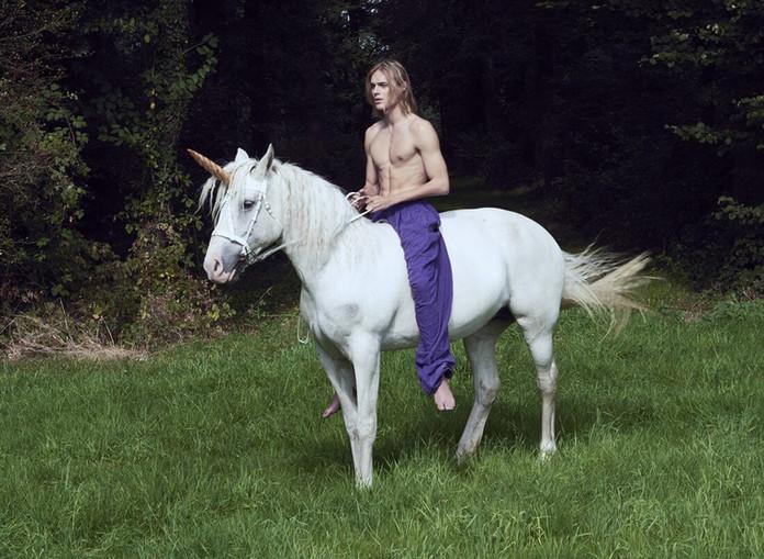 Ton-Heukels-Unicorn