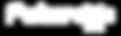 Futurex-G3-BLUSTEEL-01.png