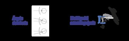 FUTUREX FX - LD - DIGITAL - FX2-02.png