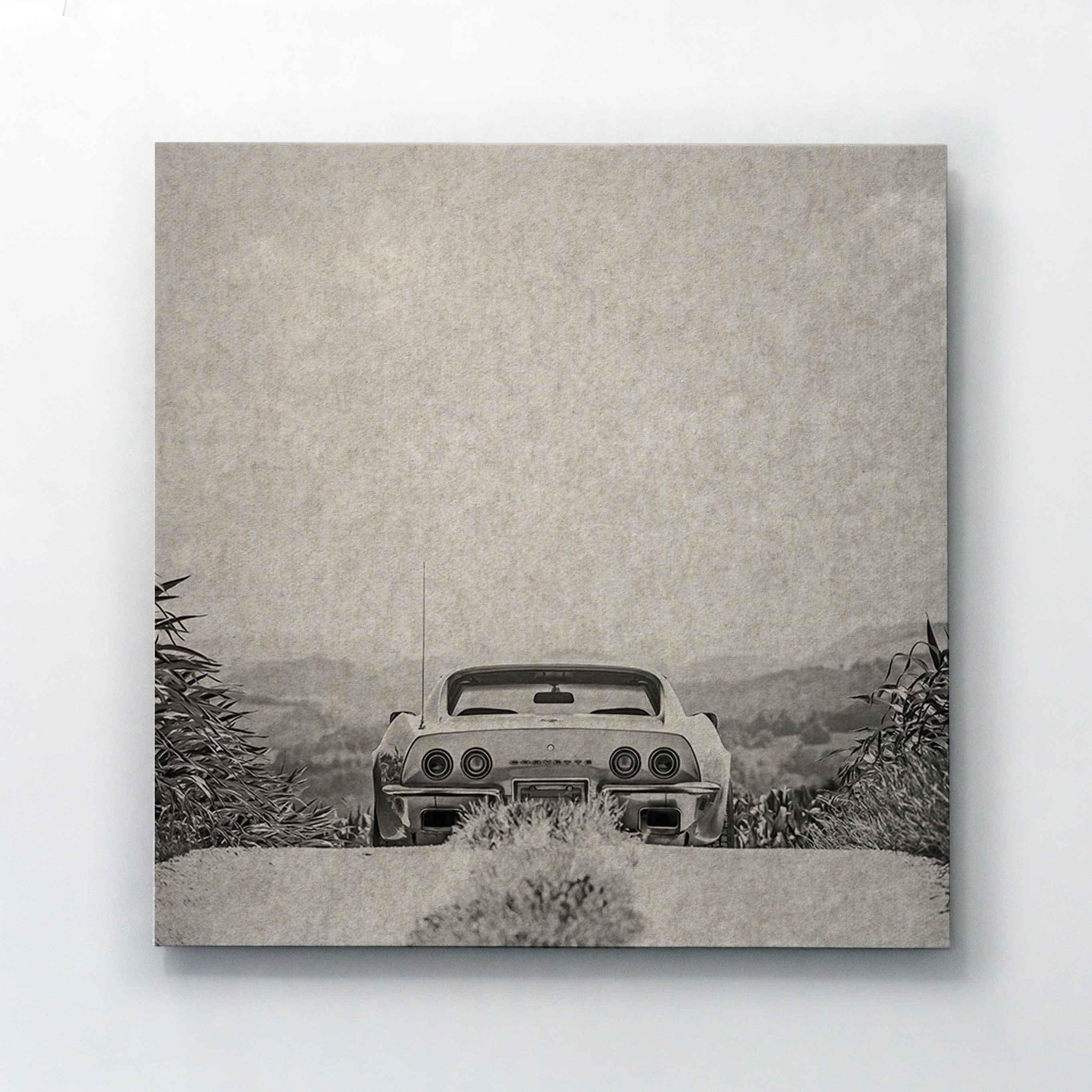 Whisperwool Akustikbild PPHILIPP Corvette
