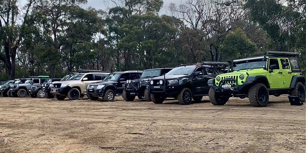 Belangalo State Forest 4WD Beginners Day Tour