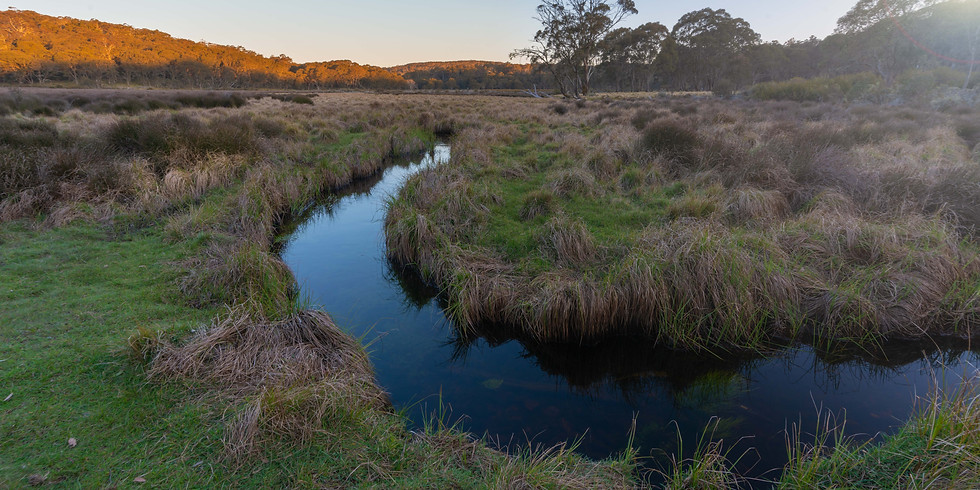 Barrington Tops 4WD & Photography Weekend Tour