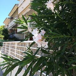 Sommerhusindretning