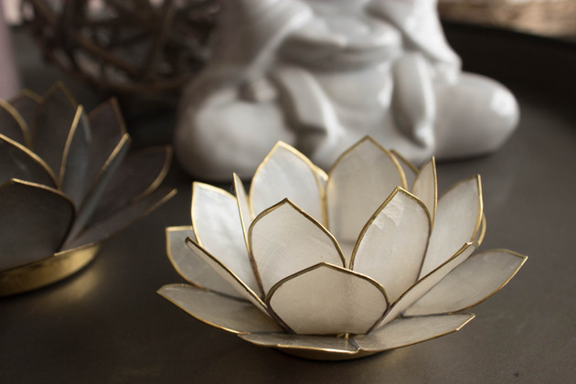 Lotus stager