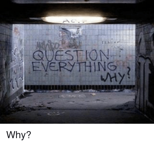 Question Everything! Why?