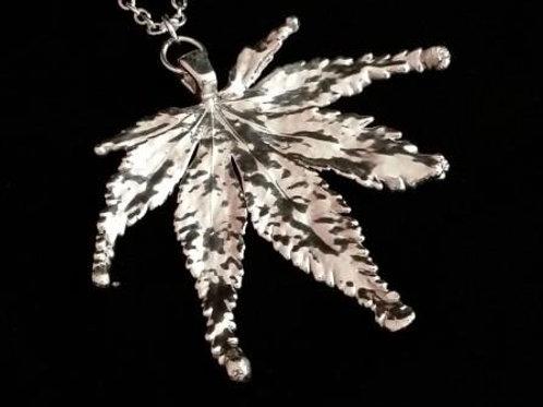Silver Japanese Acer Leaf