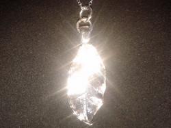 Silver Bay Leaf