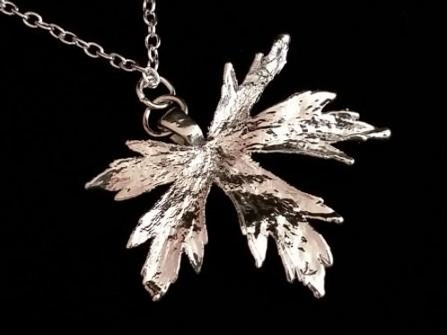 Silver 'Angel' Leaf