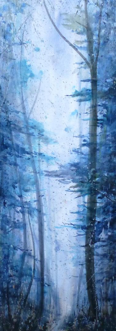 """La grande forêt"""
