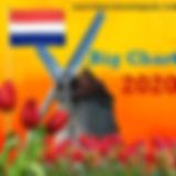 logo_bc2020.jpg