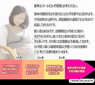 不妊治療のスケジュールsp.png
