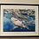Thumbnail: 'the Wandering Shark' High Quality print on canvas paper
