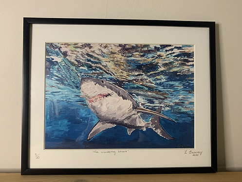 'the Wandering Shark' High Quality print on canvas paper