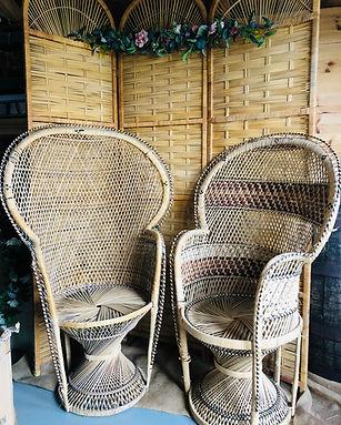 Peacock Chairs £18 each.jpg