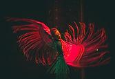 Sofia_Abraços_Flamenco.Sevilhanas.jpeg