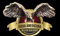 aguia americana.png