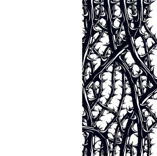 Thorns.jpg