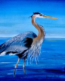 My Blue Heron - Blue Heron Series