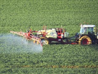 """Glyphosat-Zulassung - Pascal Arimont: """"Das zeugt von Mangel an Verantwortungsbewusstsein"""""""