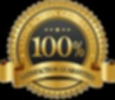 100-money-back-guarantee-logo-100-guaran