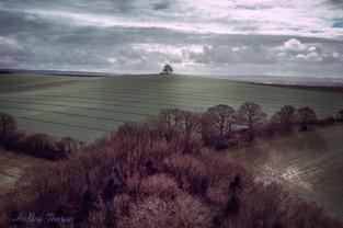 Brightwell Barrow, near Wallingford