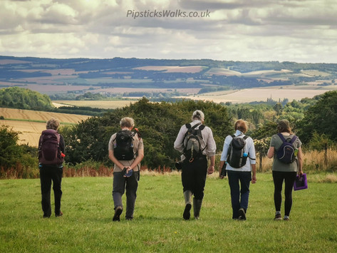Guided Walks with Pipsticks