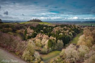 Wittenham Clumps- Round Hill