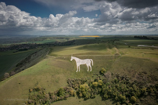 Westbury White Horse, Bratton Camp